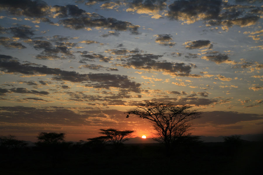 Mary Lou Graham   African Views 007